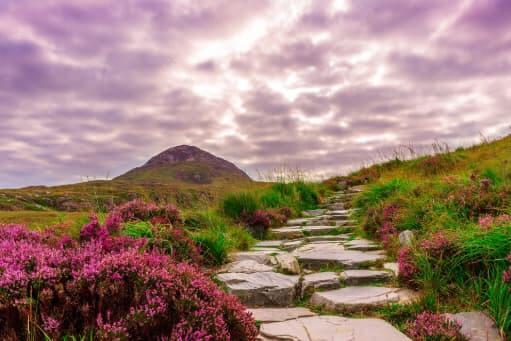 paisaje de tranquilidad con psicologo online