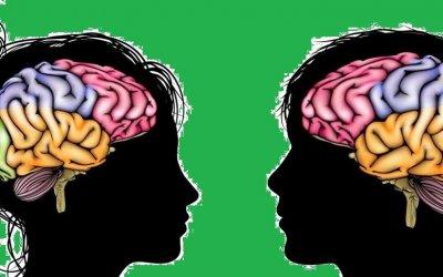 El cerebro adolescente: entre la fragilidad y el potencial